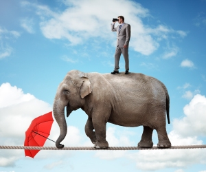 Businessman standing on top of elephant balancing on a tightrope